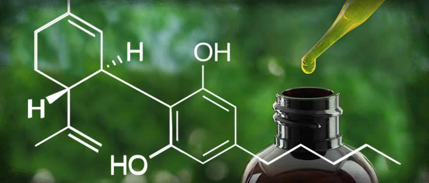 what is cbd, what is cannabidiol, cannabidiol for elderly, cbd